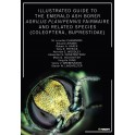 CHAMORRO  -  ILLUSTRATED GUIDE TO THE EMERALD ASH BORER AGRILUS PLANIPENNIS FAIRMAIRE AND RELATED SPECIES (COLEOPTERA, BUPRESTID