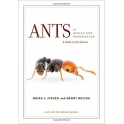 FISHER & BOLTON - ANTS OF AFRICA AND MADAGASCAR: A GUIDE TO THE GENERA