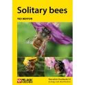 BENTON - SOLITARY BEES