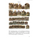 HUANG HAO, CHEN CHANG CHIN - STAG BEETLES OF CHINA I (LUCANIDAE)