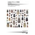 KOBAYASHI, MATSUMOTO - ATLAS OF JAPANESE SCARABAEOIDEA, VOL. 3: PHYTOPHAGOUS GROUP II: MELOLONTHINAE
