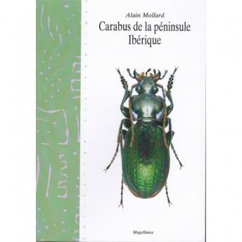 MOLLARD - CARABUS DE LA PÉNINSULE IBÉRIQUE