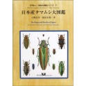 OHMOMO, FUKUTOMI - THE BUPRESTID BEETLES OF JAPAN