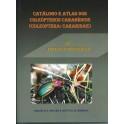 AGUIAR & SERRANO - CATALOGO E ATLAS DOS COLEOPTEROS CARABÍDEOS (COLEOPTERA: CARABIDAE) DE PORTUGALCONTINENTAL