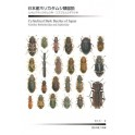 AOKI - CYLINDRICAL BARK BEETLES OF JAPAN (Fam. Bothrideridae and Zopheridae)