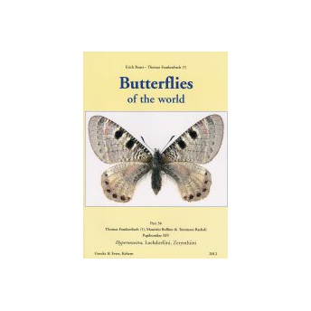 BAUER & FRANKENBACH - BUTTERFLIES OF THE WORLD, 36