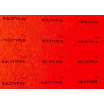 HOLOTYPUS 20