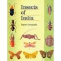 SENGUPTA - INSECTS OF INDIA