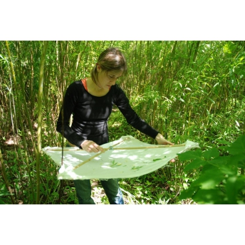 BOUGET & NAGELEISEN - FOREST INSECT STUDIES: METHODS AND TECHNIQUES. KEY CONSIDERATIONS FOR STARDARDISATION. AN OVERVIEW OF THE