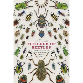 BOUCHARD - THE BOOK OF BEETLES: A LIFE-SIZE GUIDE TO SIX HUNDRED OF NATURE'S GEMS