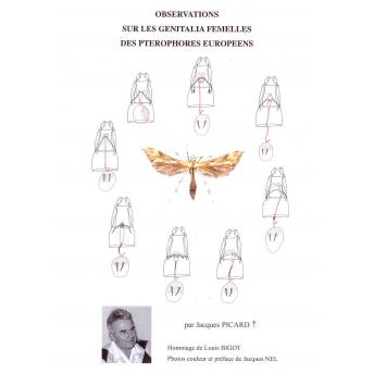PICARD - OBSERVATIONS SUR LES GENITALIA FEMELLES DES PTEROPHORES EUROPEENS