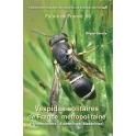 GEREYS - FAUNE DE FRANCE, Vol. 98: VESPIDAE SOLITAIRES DE FRANCE MÉTROPOLITAINE (HYMENOPTERA  EUMENINAE MASARINAE)