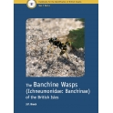 BROCK - HANDBOOKS FOR THE IDENTIFICATION OF THE BRITISH INSECTS. VOLUME 7, PART 4: THE BANCHINE WASPS