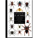 PLATNICK - SPIDERS OF THE WORLD: A NATURAL HISTORY