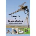 KAZENAS & KASTCHEEV - INSECTS OF KAZAKHSTAN: A PHOTOGRAPHIC ATLAS