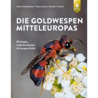 WIESBAUER - GOLDWESPEN MITTELEUROPAS