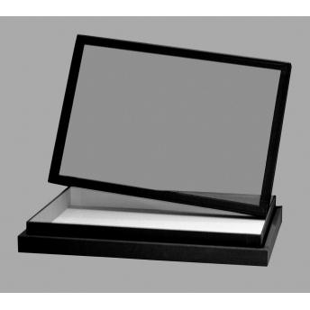 CAJA ENTOMOLOGICA NEGRA CRISTAL Y FONDO EMALENE, 26x19x5,4 cm
